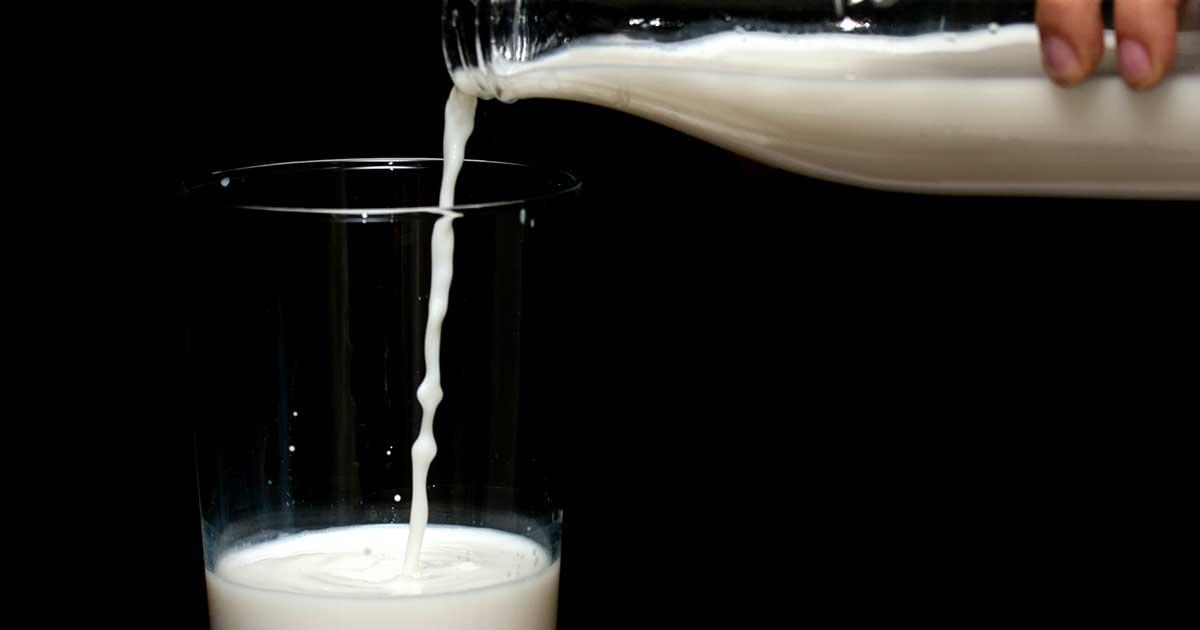 Il latte fa bene o fa male?